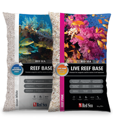 230X260-Reef-Base
