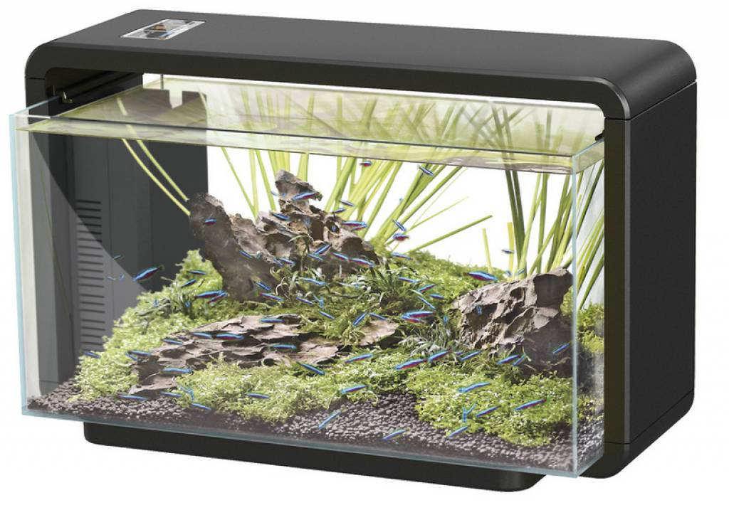 Superfish home hustinx aquaristiek for Superfish led verlichting