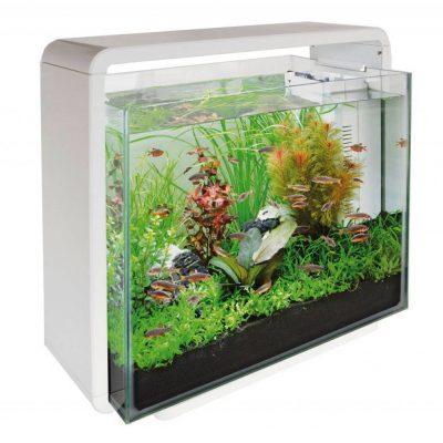 superfish-home-40-aquarium-wit