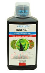 blue_exit