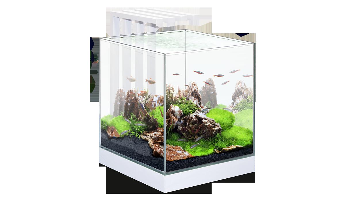 ciano nexus hustinx aquaristiek. Black Bedroom Furniture Sets. Home Design Ideas