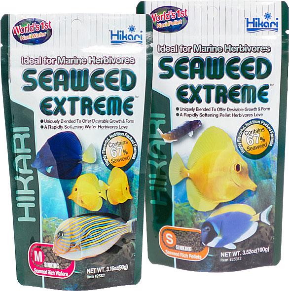 Hikari Marine Seaweed M Wafer